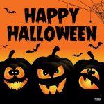 Halloween Spook Me Not